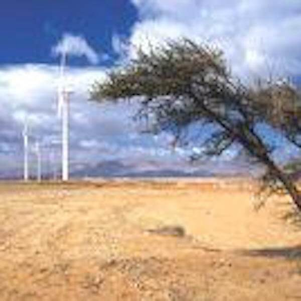 Egypt: Zafarana Wind Turbines, 2002, New & Renewable Energy